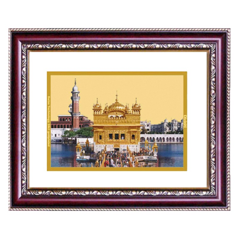 24K GOLD PLATED DG FRAME 105 SIZE 2 CLASSIC COLOR GOLDEN TEMPLE