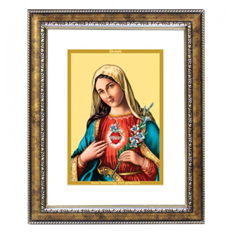 24K GOLD PLATED DG FRAME 113 SIZE 1 CLASSIC COLOR MOTHER MARY