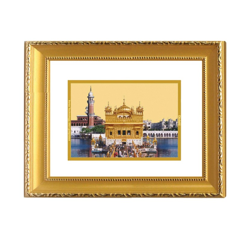 24K GOLD PLATED DG FRAME 101 SIZE 2 CLASSIC COLOR GOLDEN TEMPLE