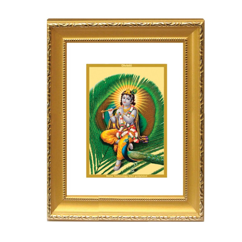 DG FRAME 101 SIZE 2 CLASSIC COLOR RECTANGULAR FEATHER KRISHNA