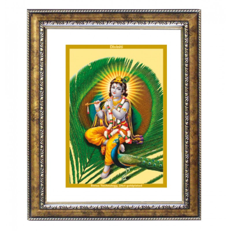 DG FRAME 113 SIZE 2.5 CLASSIC COLOR RECTANGULAR FEATHER KRISHNA
