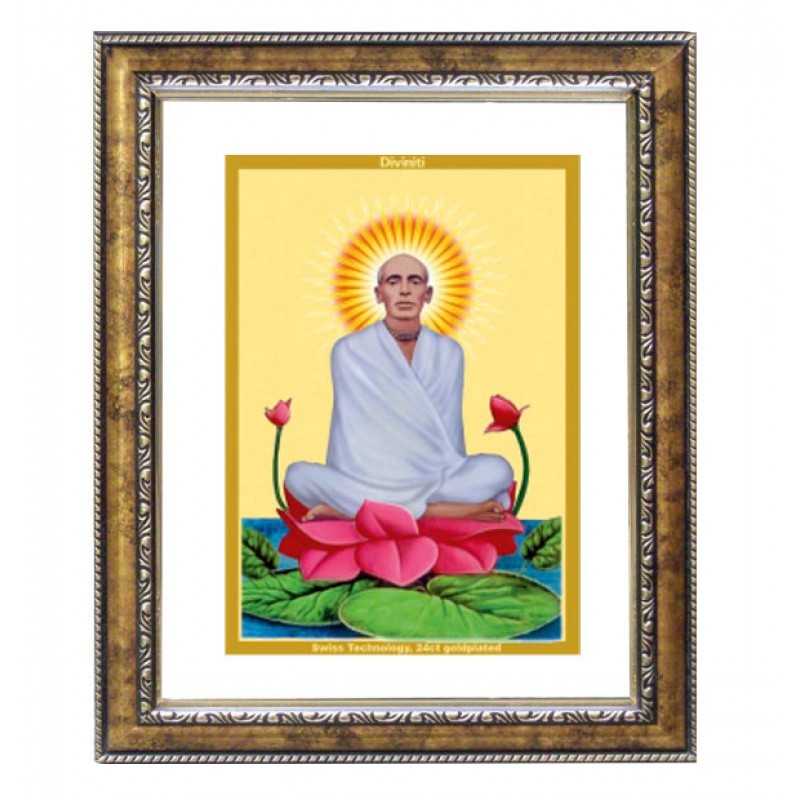 24K GOLD PLATED DG FRAME 113 SIZE 2.5 CLASSIC COLOR RAM THAKUR