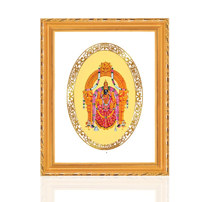 24K GOLD PLATED DG FRAME 103 SIZE 3 ROYALE COLOR PADMAWATI