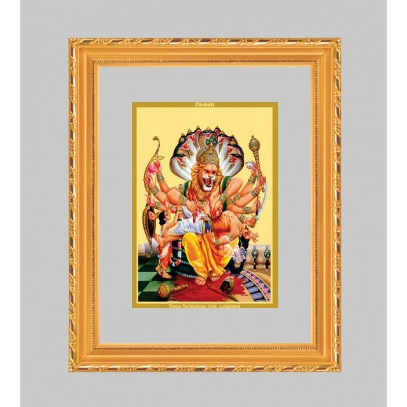 24K GOLD PLATED DG FRAME 103 SIZE 1 CLASSIC COLOR NARSIMHA