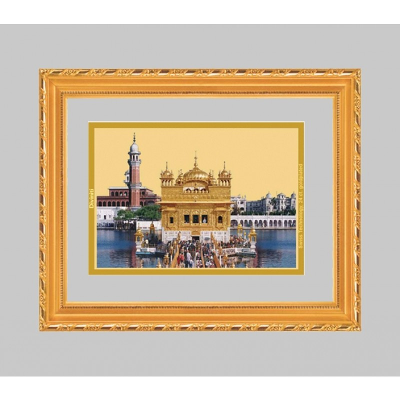 24K GOLD PLATED DG FRAME 103 SIZE 1 CLASSIC COLOR GOLDEN TEMPLE