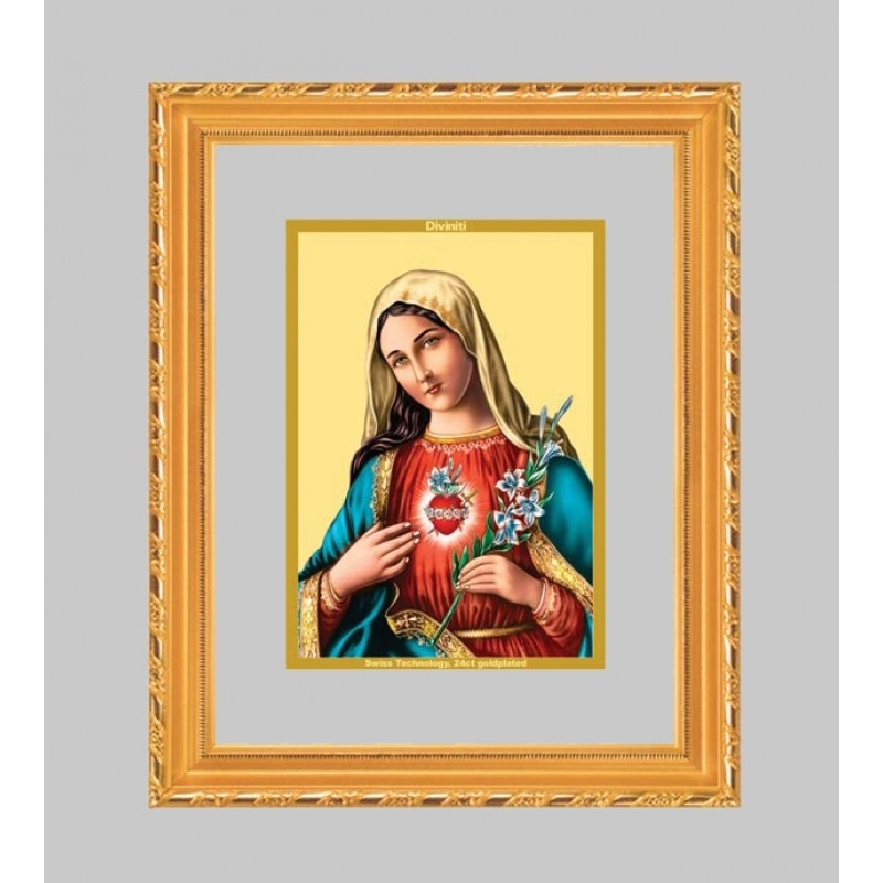 24K GOLD PLATED DG FRAME 103 SIZE 1 CLASSIC COLOR MOTHER MARY