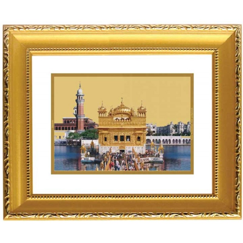 24K GOLD PLATED DG FRAME 101 SIZE 1 CLASSIC GOLD GOLDEN TEMPLE
