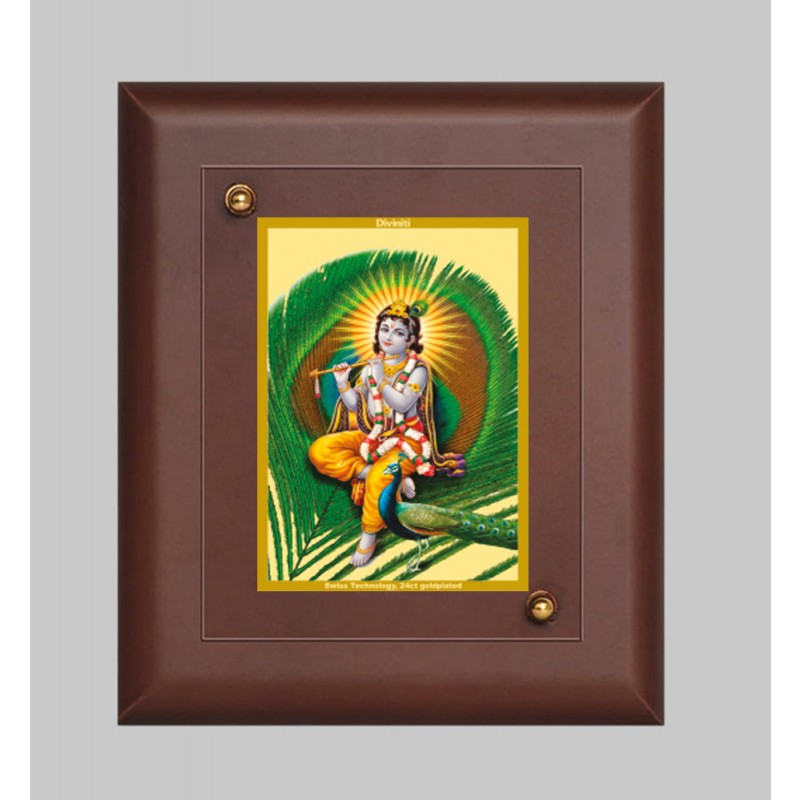 MDF FRAME SIZE 2 CLASSIC COLOR  RECTANGULAR FEATHER KRISHNA
