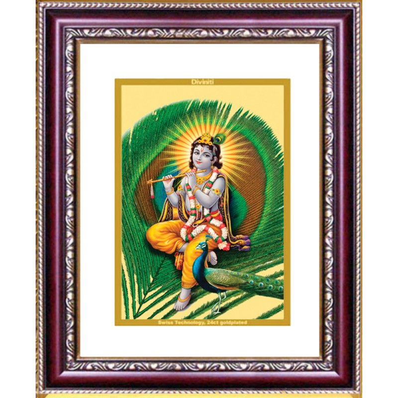DG FRAME 105 SIZE 2.5 CLASSIC COLOR RECTANGULAR FEATHER KRISHNA