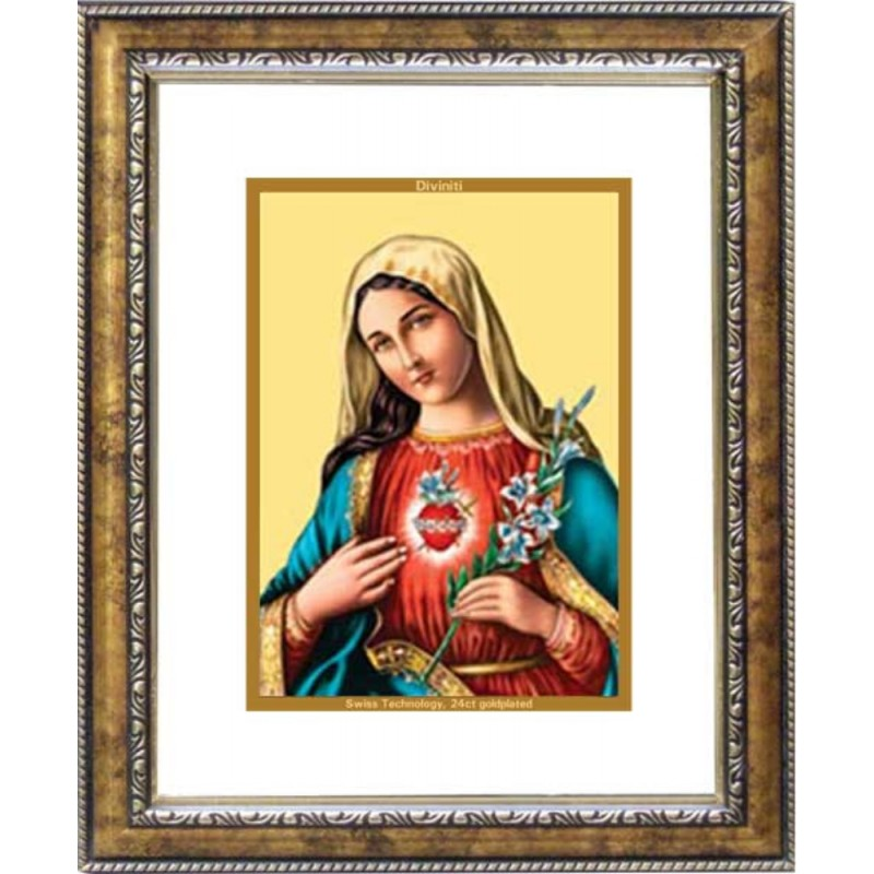 24K GOLD PLATED DG FRAME 113 SIZE 2 CLASSIC COLOR MOTHER MARY