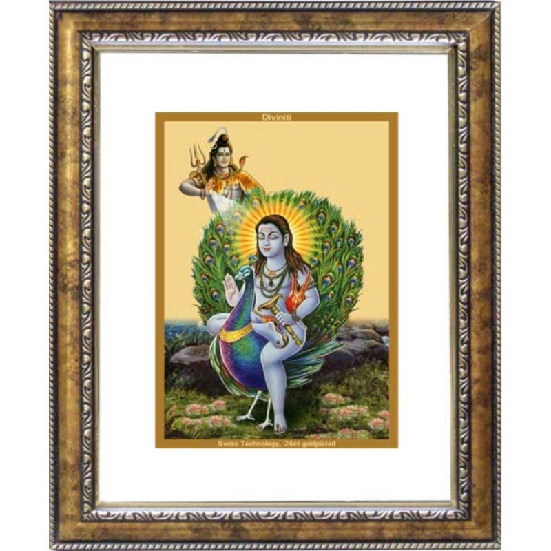 24K GOLD PLATED DG FRAME 113 SIZE 2 CLASSIC COLOR BABA BALAK NATH