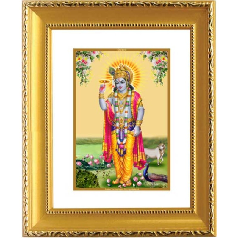 24K GOLD PLATED DG FRAME 101 SIZE 1 CLASSIC GOLD KRISHNA -4