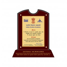 MDF TROPHy INDIAN AVIATION ACADEMY(IAA)