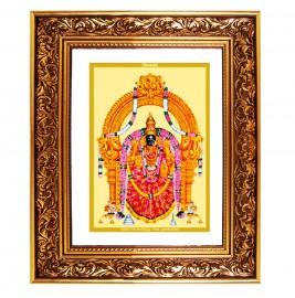 24K GOLD PLATED DG FRAME 93 SIZE 4.5 CLASSIC COLOR PADMAWATI