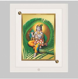 24K GOLD PLATED ACF FRAME SIZE 1 CLASSIC COLOR KRISHNA-4