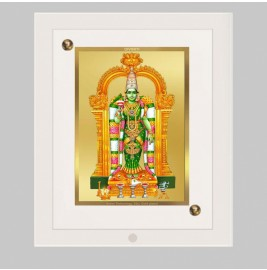 24K GOLD PLATED ACF FRAME SIZE 2 CLASSIC COLOR MEENAKSHI