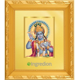 24K GOLD PLATED DG FRAME 103 SIZE 1 CLASSIC COLOR NARAYAN